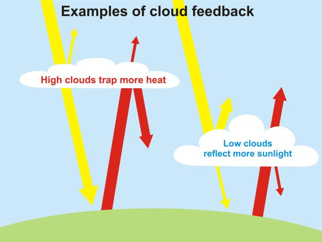 Cloud_Feedback_1024